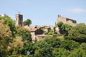 Montaroux-Fotolia_53870282